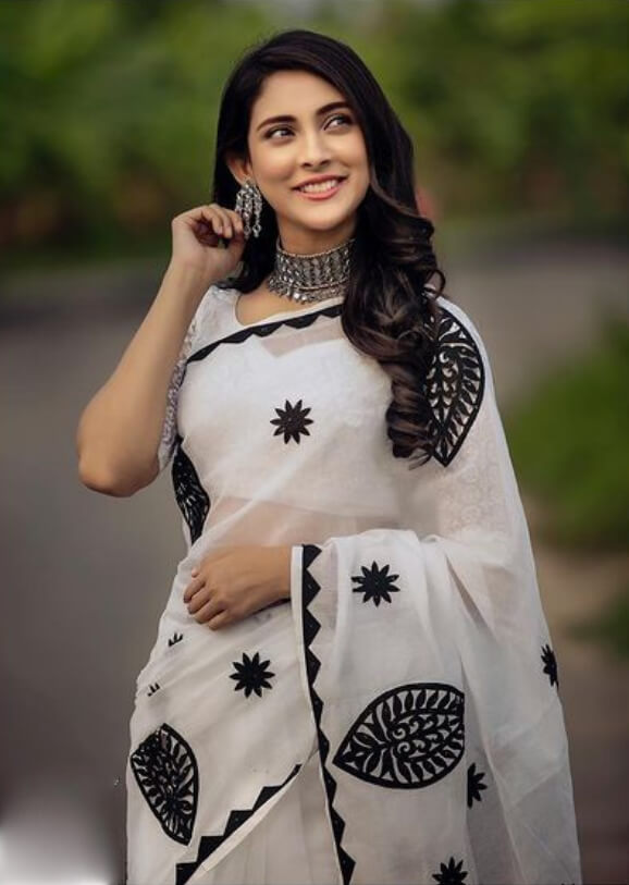 Mehazabien Chowdhury New Saree Photo hd