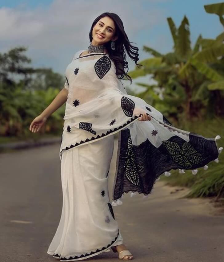 Mehazabien Chowdhury Nice Saree Photo