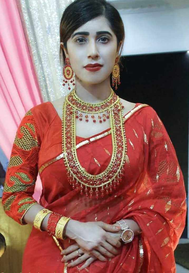 Naila Nayem Red Color Saree Photo
