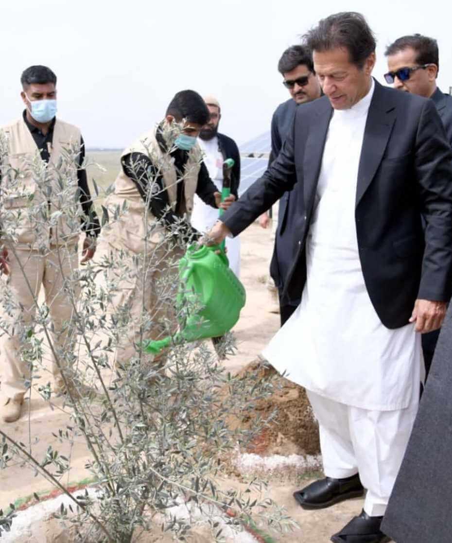 Pakistani PM Imran Khan Working Photo