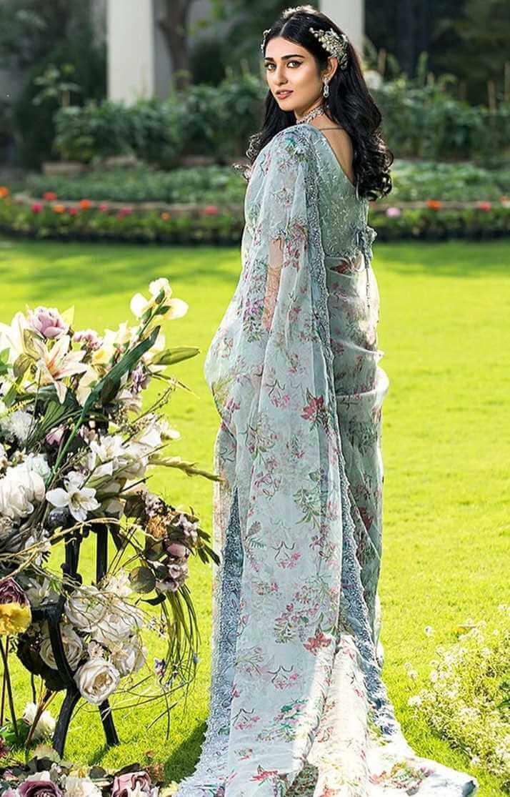 Sarah Khan Hot Saree Pic